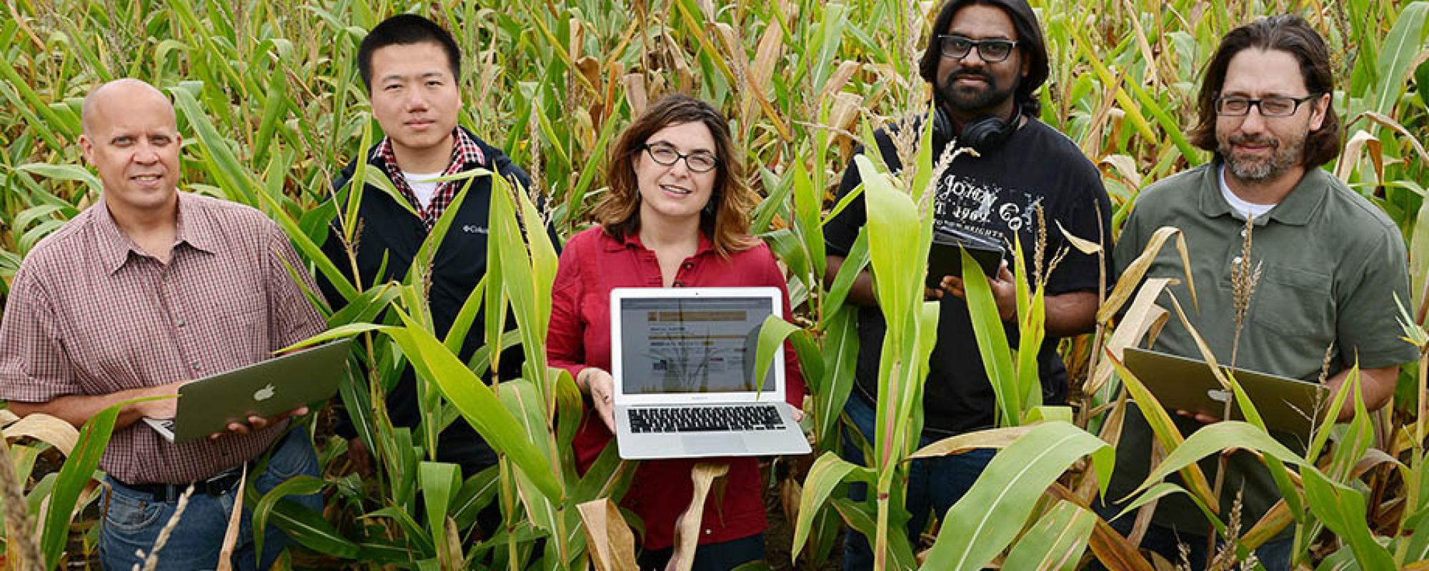 five people in a corn field with computers